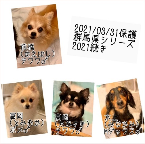 mini2021S__129138762-2.jpg