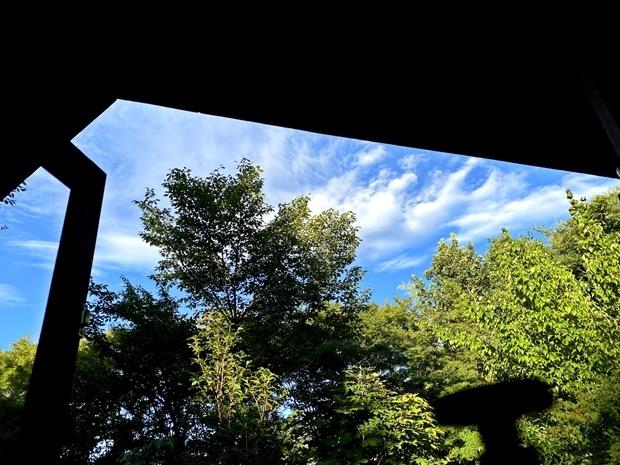 夏、目覚めの景色