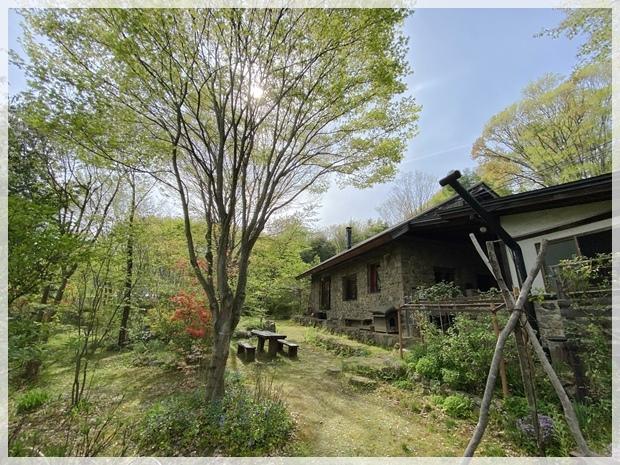 石積みの家、前庭の芽吹き