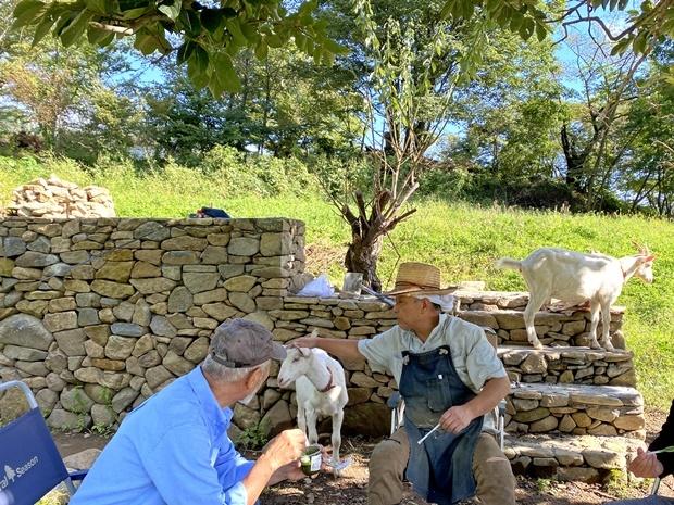 ヤギ小屋用の石垣が素晴らしい