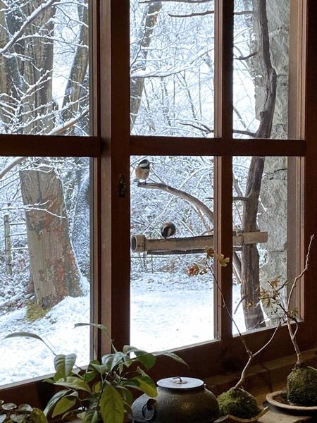 母屋の窓辺の鳥のエサ台