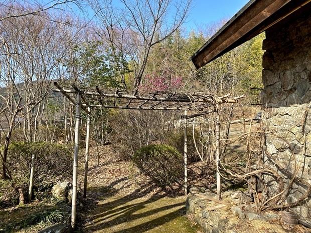 旧竹パーゴラ