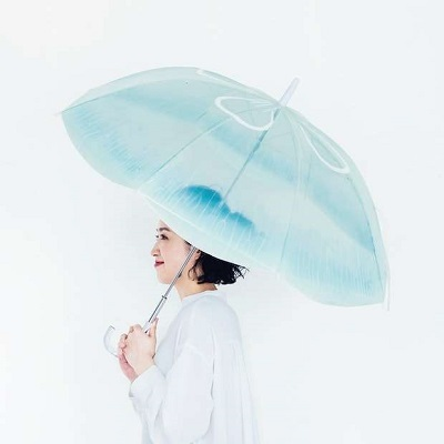 ミズクラゲの傘