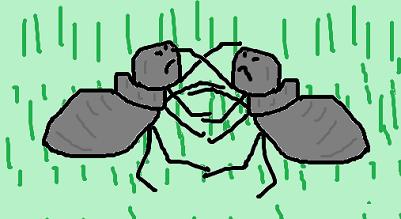 アリの争い