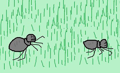 アリの争い 2