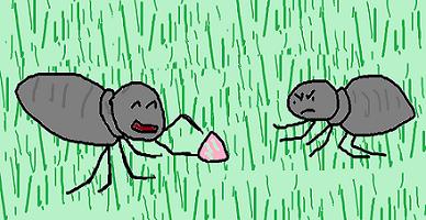アリの争い 3