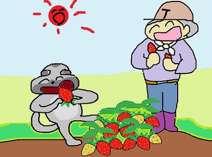 コロンと苺