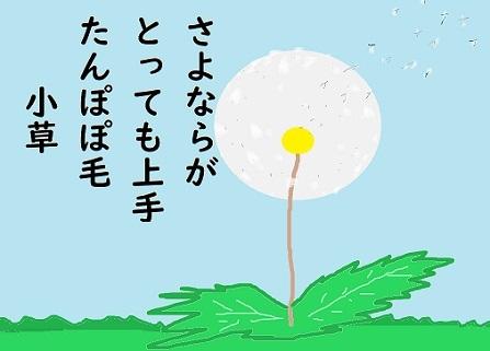 川柳: 小草  ペ