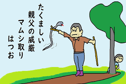 川柳 マムシ取り