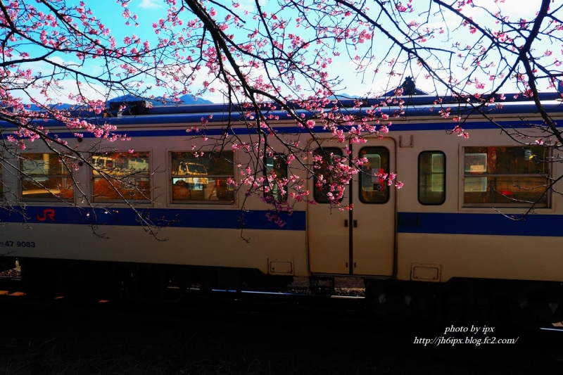 P1251748 (2)(blog)