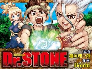 main_drstone_R.jpg