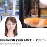 田崎麻友美 (気象予報士 • 防災士)さん (@Mayumi_Weather)