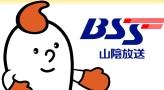 BSSテレビ