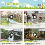 千葉の動画コーナー