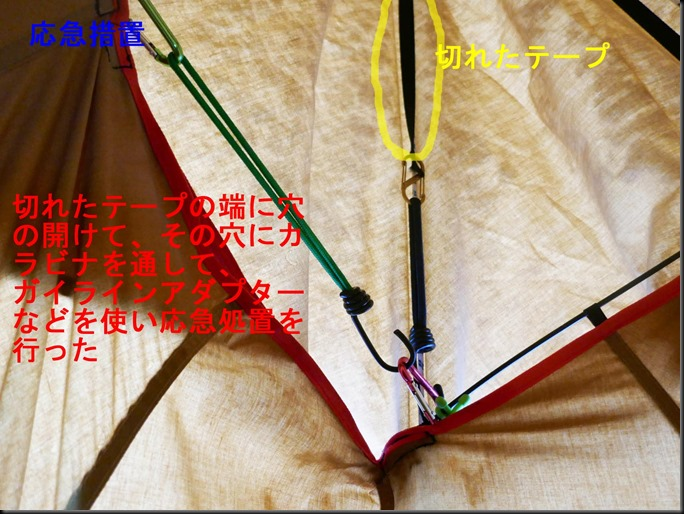 70%-2020_0329_052458-5 (2)