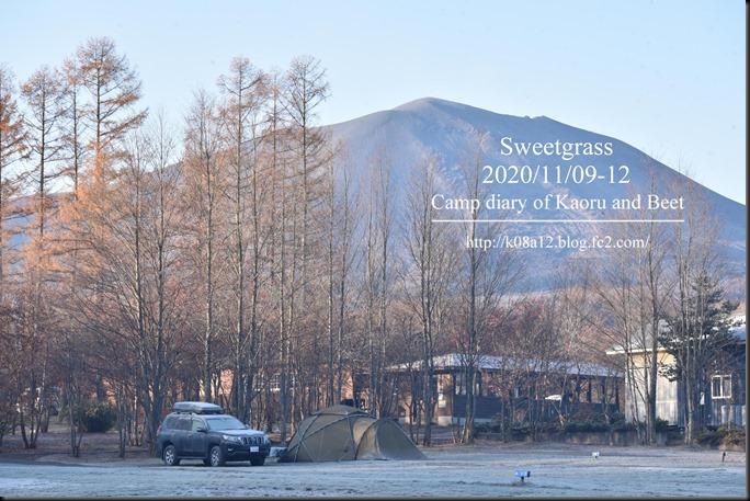 SG202011-003