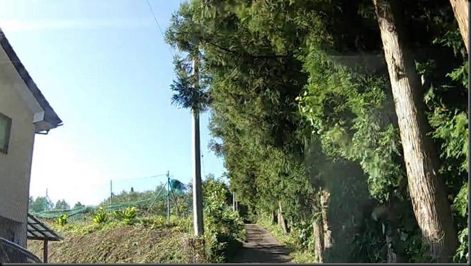kurinoki-202009-002_F
