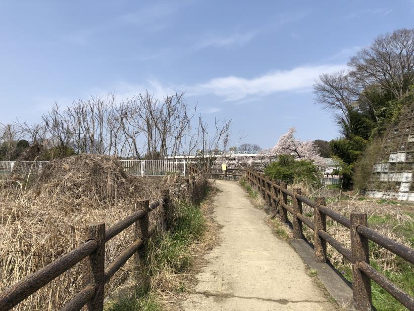 秋川サイクリングロード36