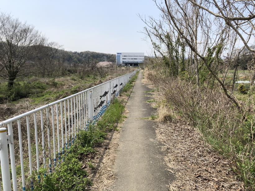 秋川サイクリングロード37