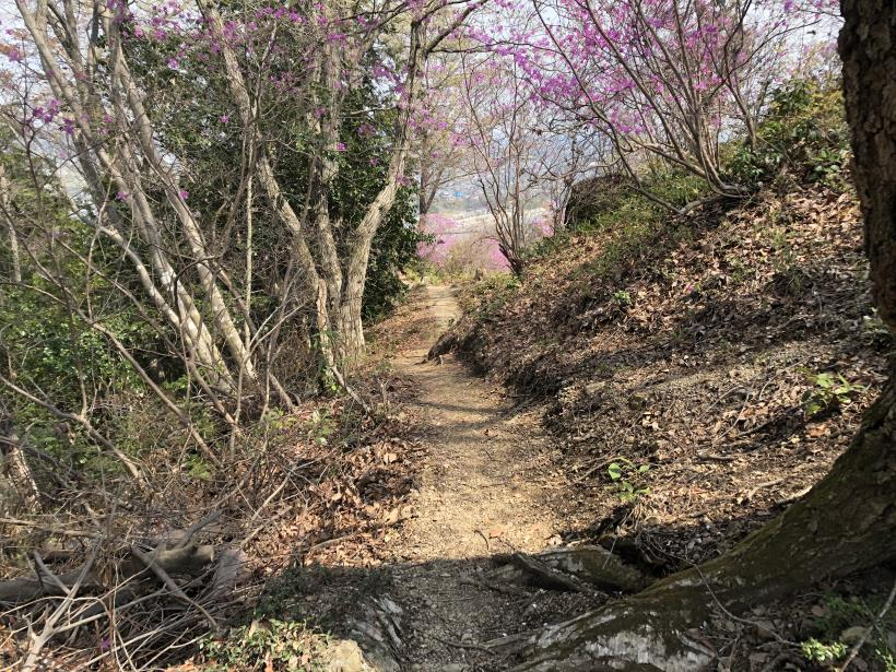 秋川サイクリングロード49