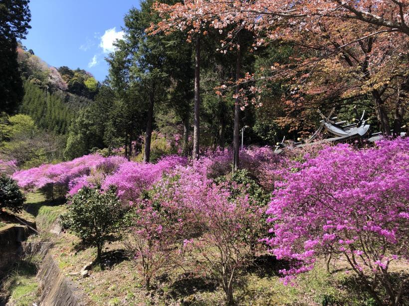 北浅川~今熊山29
