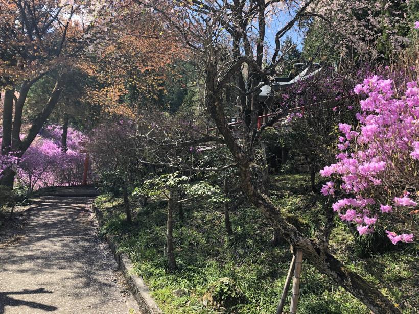 北浅川~今熊山30
