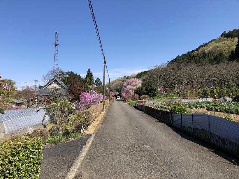 北浅川~今熊山61