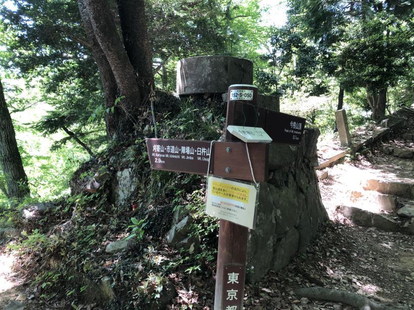 今熊神社~盆掘間伐作業道12