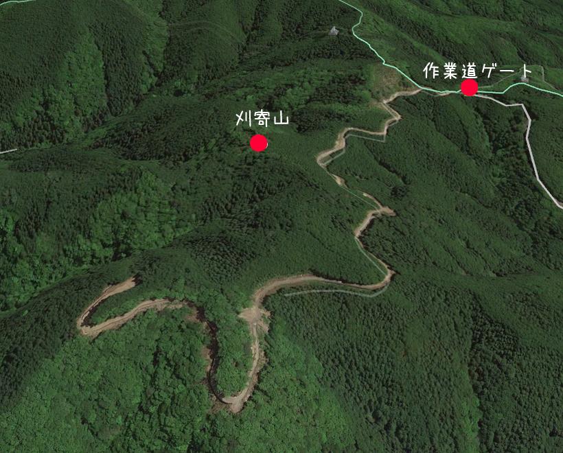 今熊神社~盆掘間伐作業道88