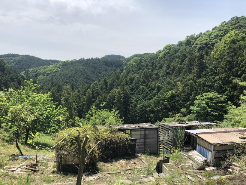 関の入~虎秀35