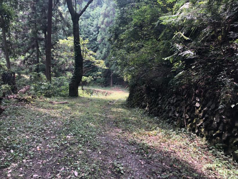 樽沢林道と金比羅山21
