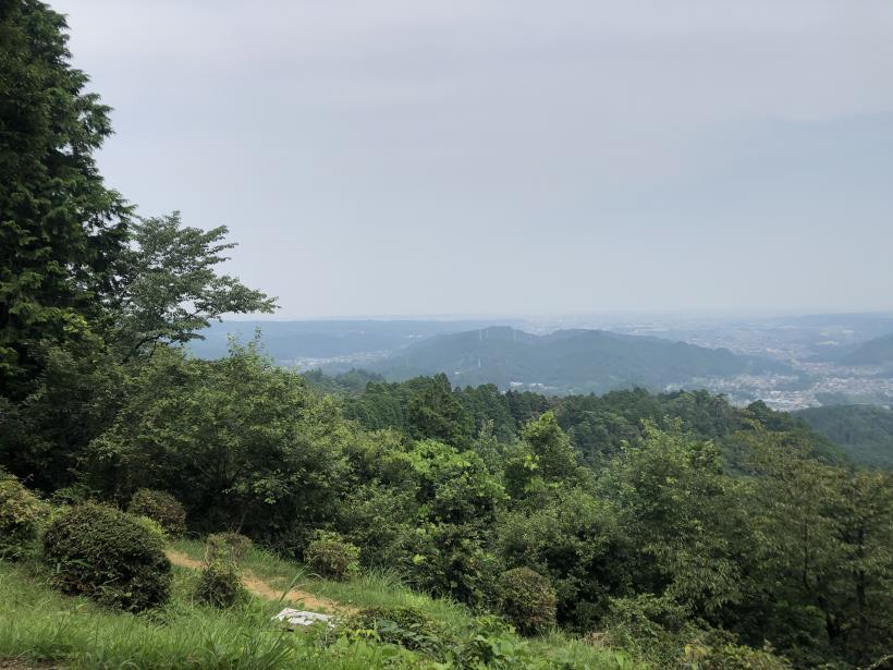 樽沢林道と金比羅山45