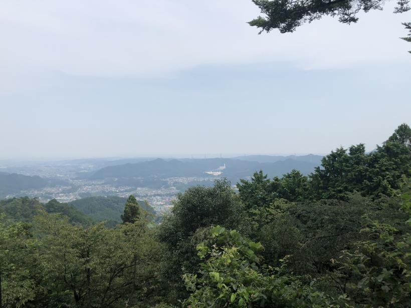 樽沢林道と金比羅山46