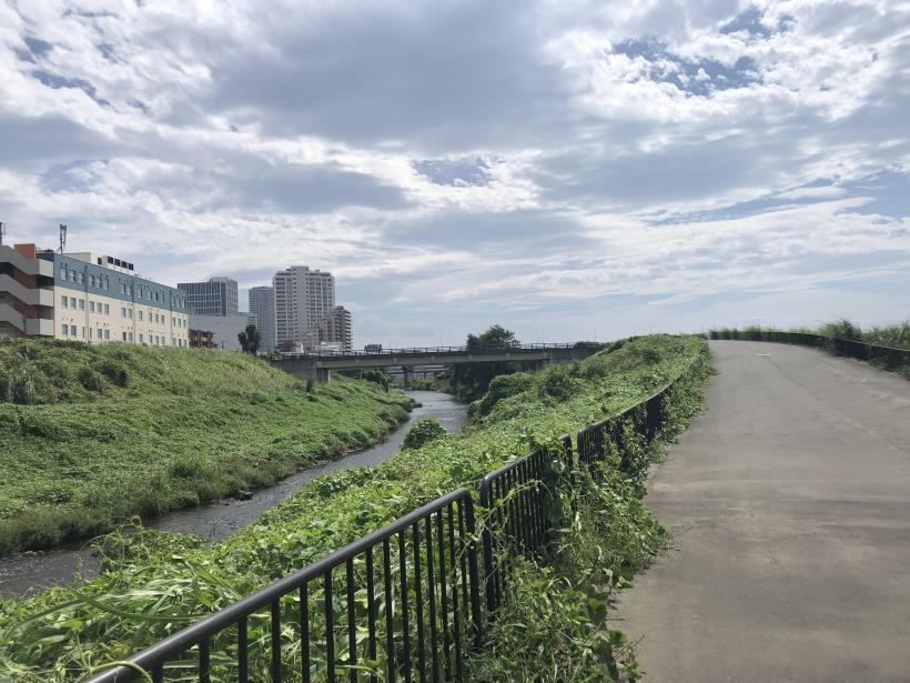 多摩川河口12