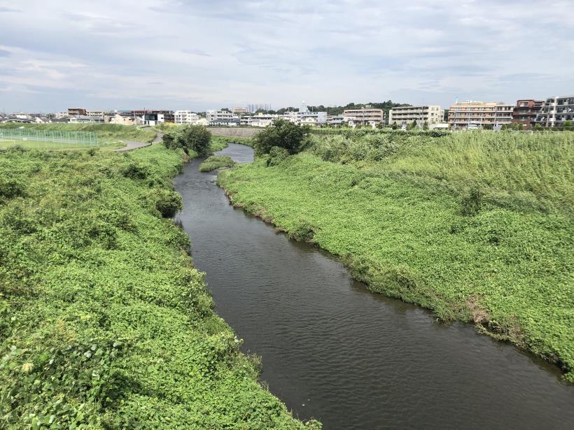 多摩川河口13