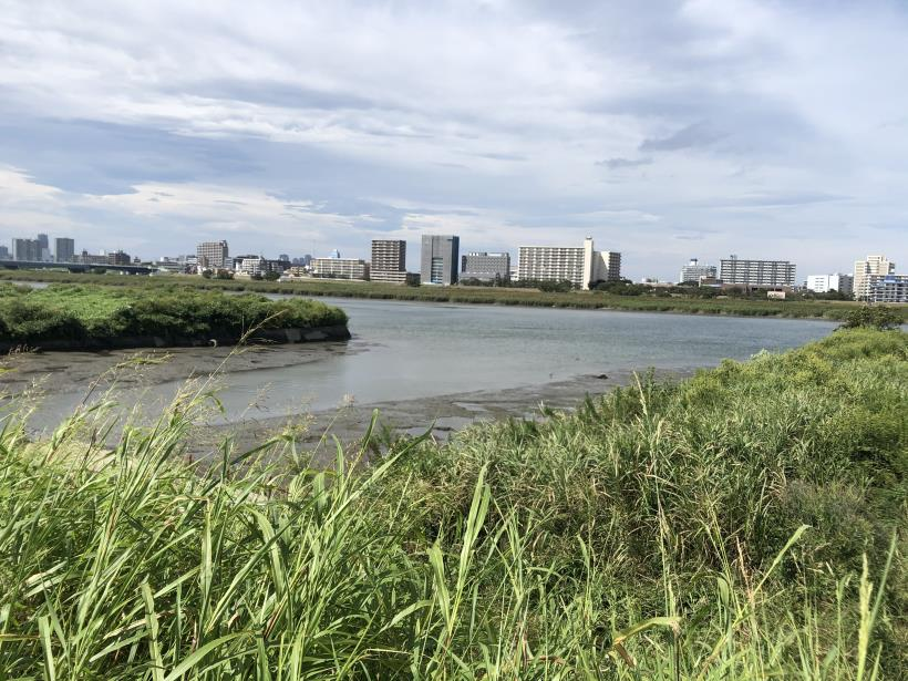 多摩川河口24