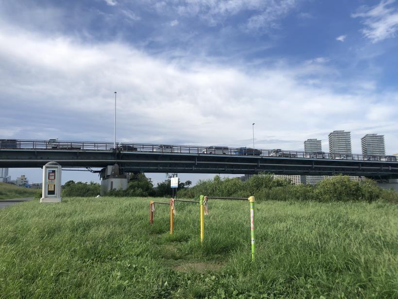 多摩川河口50
