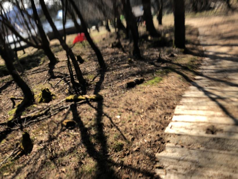 笠取山散歩02