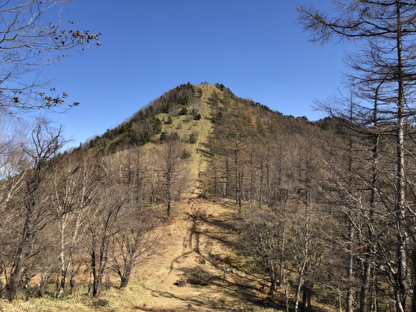 笠取山散歩09