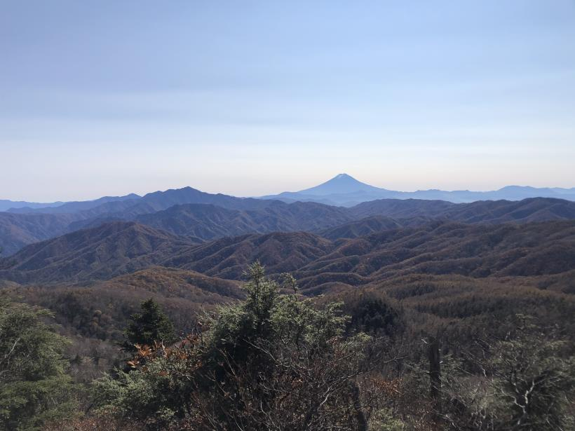 笠取山散歩13