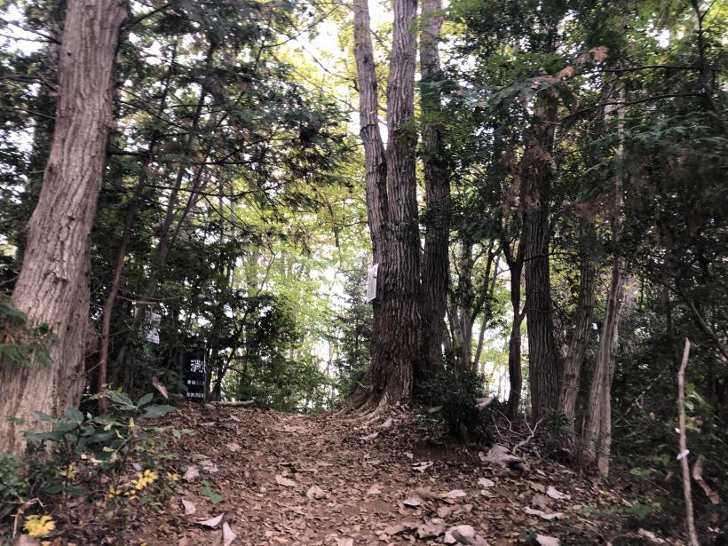 長淵山から日の出へ抜ける11