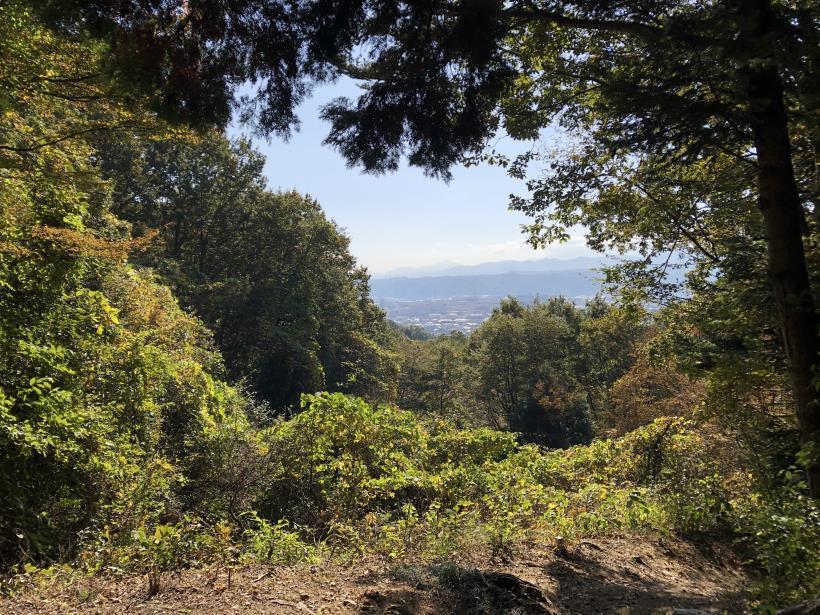 日の出野鳥の森15