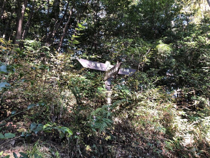 日の出野鳥の森35