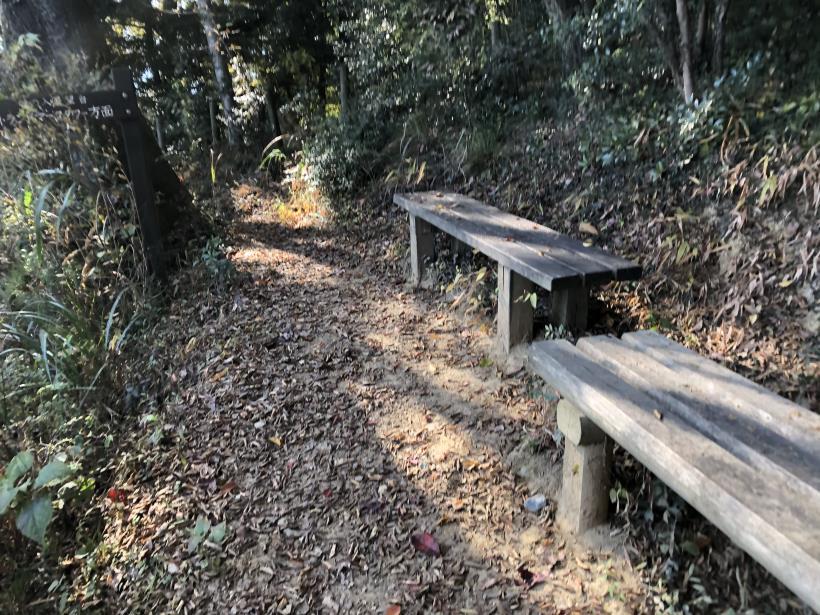 日の出野鳥の森53