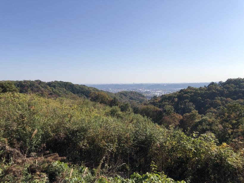 日の出野鳥の森59
