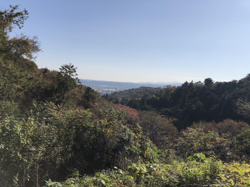 日の出野鳥の森69