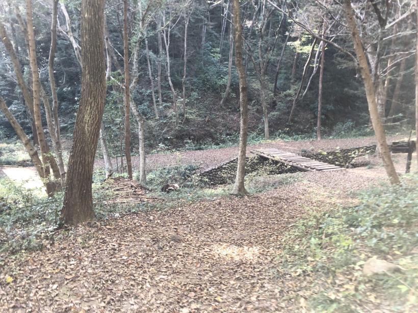 日の出野鳥の森73