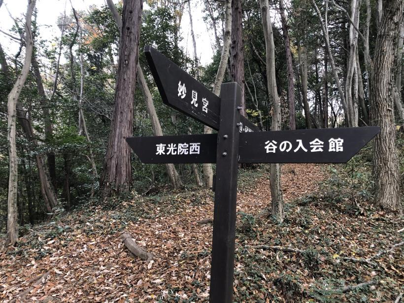 日の出野鳥の森続15