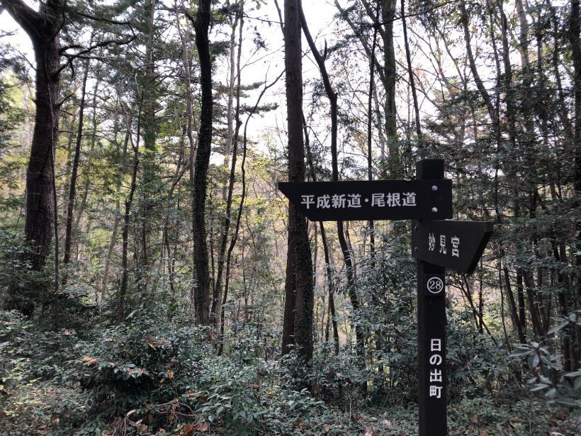 日の出野鳥の森続16
