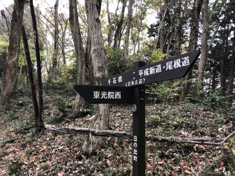 日の出野鳥の森続47